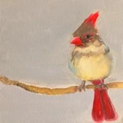 Oiseau d'Amour